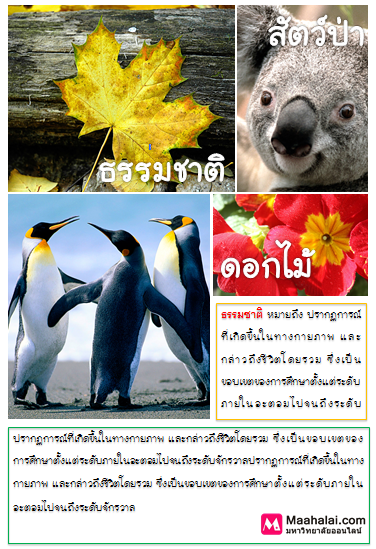 Word-2010-27.png