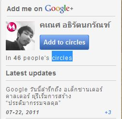 Google Plus Widget  Widget    circles 
